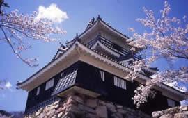 Castle Hamamatsu  http://www.hamamatsu-navi.jp/shiro/
